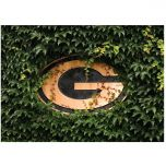 Packers Ivy Wall Greeting Card